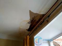 Намокание конструкций внутри квартиры, обрушение отделки